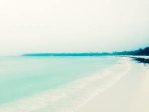 Beach Day 1
